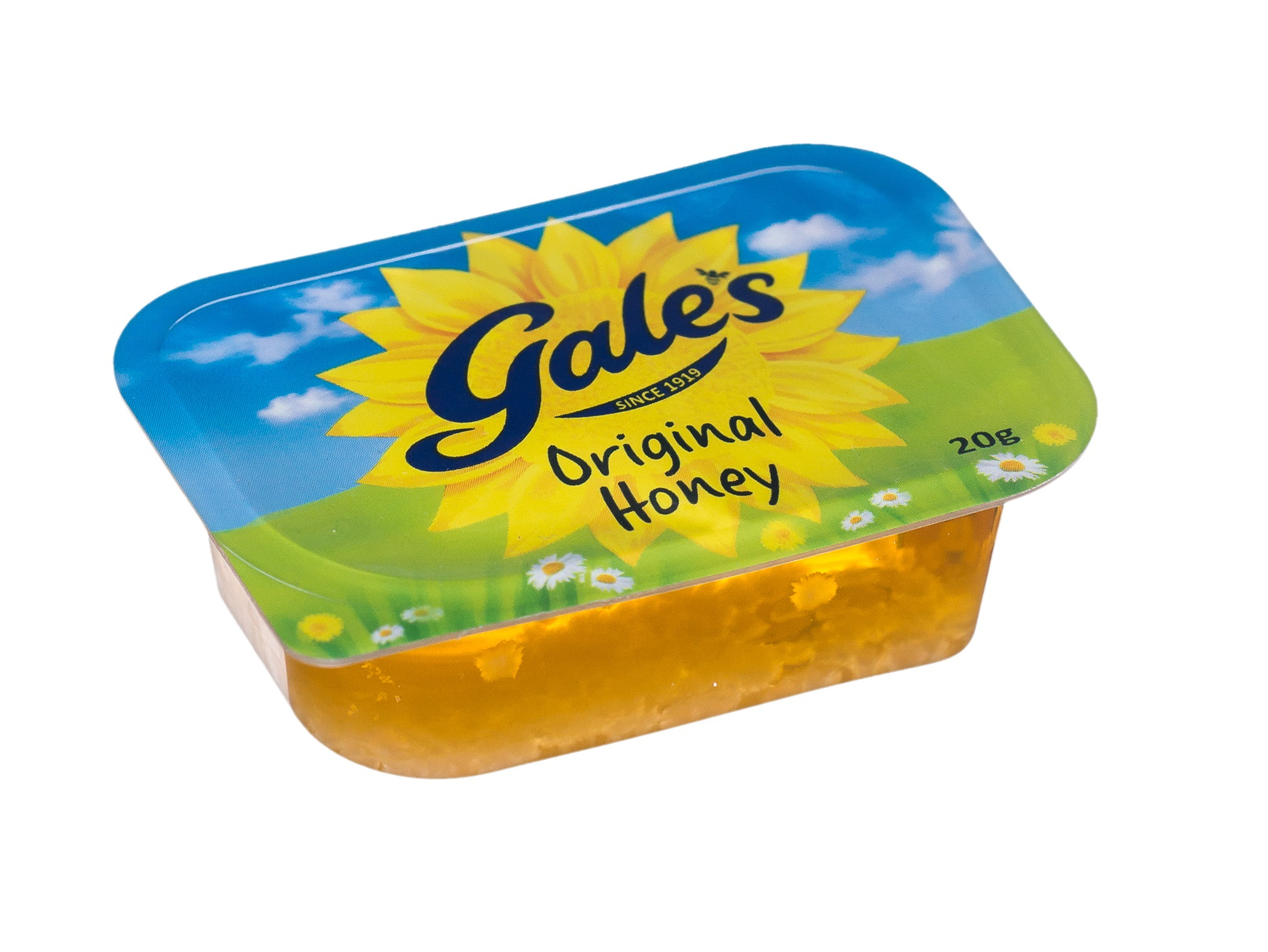GALES HONEY PORTION POT 20G CASE X 100