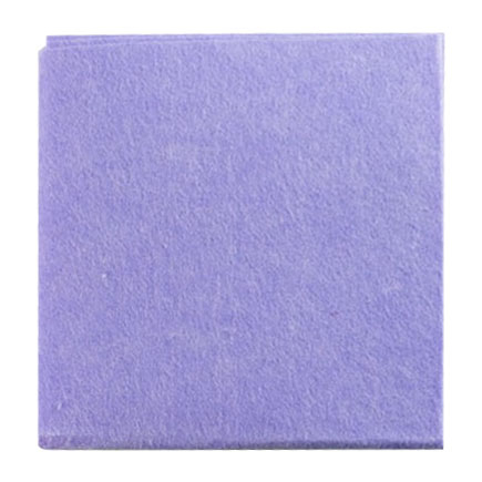 SOFT WIPE/CLOTH BLUE EASY 10 PER PACK