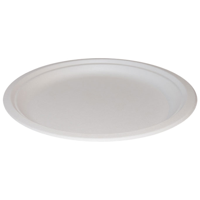 "10"" Bagasse Plate - Case/500"